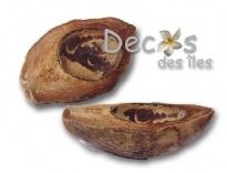 Plus d'infos sur 1/2 Noix de coco