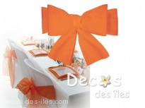 Plus d'infos sur Noeud de chaise orange